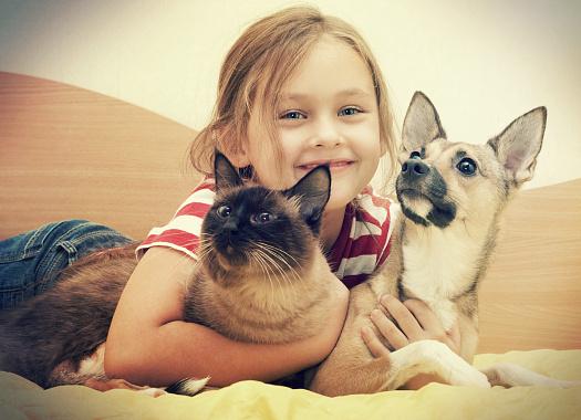 Как сделать фото ребенка с животными